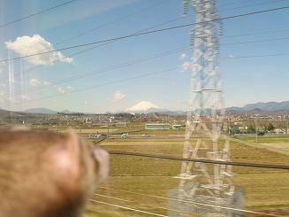 新幹線から外を見るフェレット
